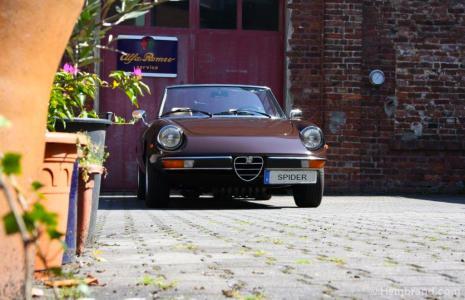 spare parts for Alfa Romeo 2000 Spider veloce ( 105/115